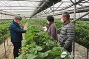 수원시농업기술센터,'딸기 재배기술 현장 컨설팅'운영
